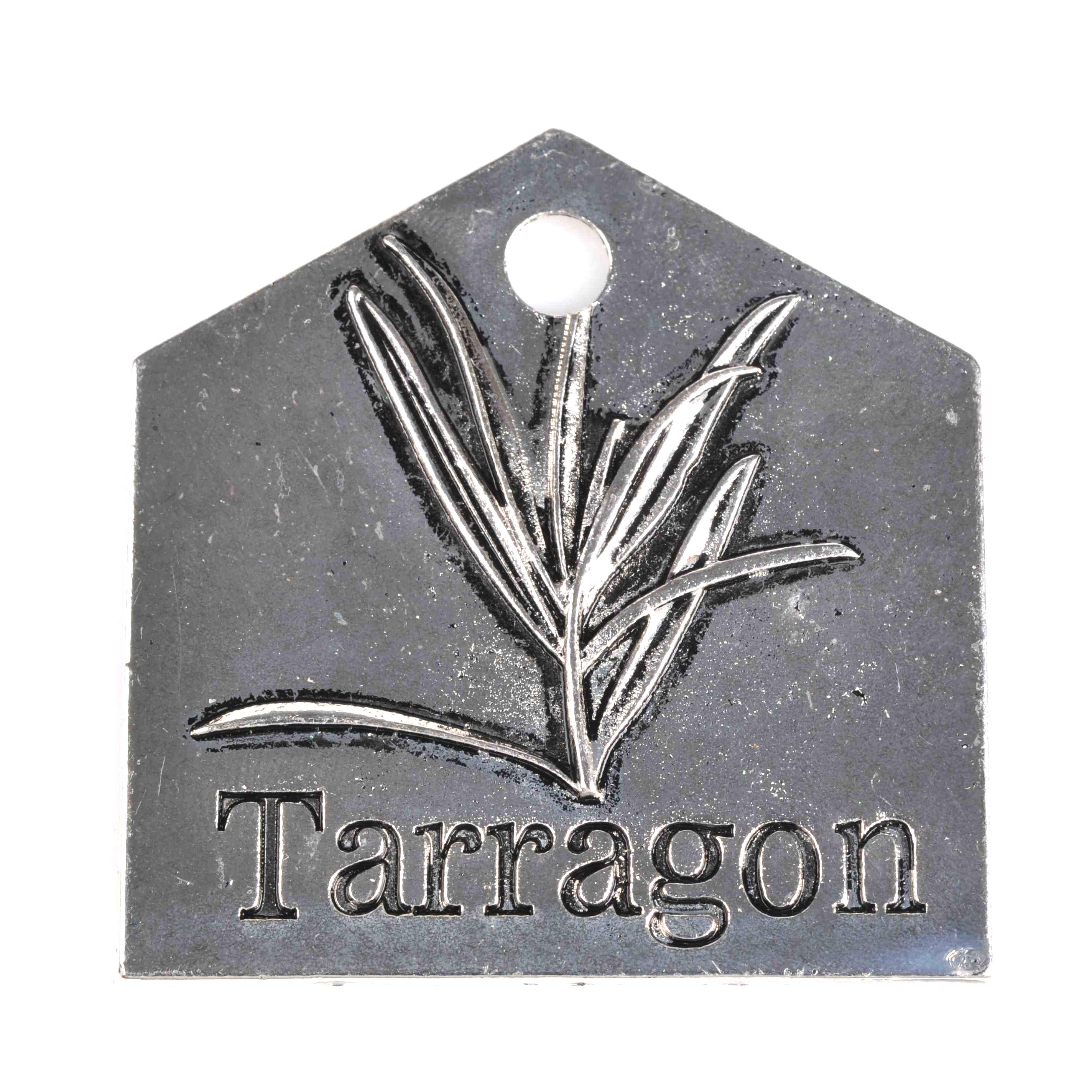 GAG1-00054 Tarragon